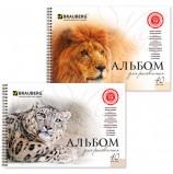 Альбом для рисования, А4, 40 листов, гребень, обложка картон, BRAUBERG, 205х290 мм, 'Благородные кошки', 102831