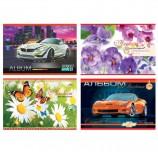 Альбом для рисования, А4, 40 листов, скоба, обложка офсет, АППЛИКА, 202х285 мм, 'Автомобили/Цветы', С1184