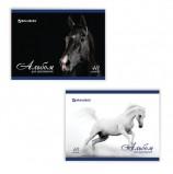 Альбом для рисования, А4, 40 листов, скоба, обложка картон, BRAUBERG, 200х283 мм, 'Благородные кони', 103728