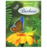 Дневник для 5-11 классов, 48 л., твердый, BRAUBERG, глянцевая ламинация, подсказки, 'Бабочка', 104948