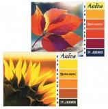 Альбом для рисования А4 24 листа, гребень, обложка картон, BRAUBERG ЭКО, 205х290 мм, 'Макро', 105062