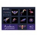 Альбом для рисования А4 40 л., скоба, выборочный лак, BRAUBERG, 202х285 мм, 'Птицы', 105098
