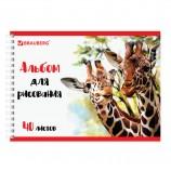 Альбом для рисования, А4, 40 л., гребень, обложка картон, BRAUBERG ЭКО, 205х290 мм, 'Жирафы', 105104