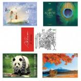 Альбом для рисования, А4, 32 листа, скоба, обложка картон, HATBER 'ECO', 205х290 мм, Ассорти (5 видов), 32А4C