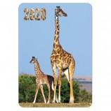 Календарь карманный 2020 г, 7х10 см, ламинированный, 'Животные', HATBER, 326510, Кк7