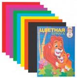 Цветная бумага А4 газетная, 16 листов 8 цветов, на скобе, АППЛИКА, 200х290 мм, 'Львы', С0005