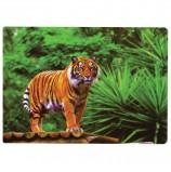 Настольное покрытие для письма и творчества BRAUBERG, размер А4, пластик, 'Тигр', 227255