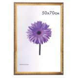 Рамка премиум 50х70 см, пластик, багет 33 мм, 'Dorothy', золото, 0023-50-4274