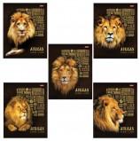 Тетрадь А5, 48 л., HATBER, скоба, клетка, 3D фольга, 3D лак, 'KING LION' (5 видов в спайке), 48Т5офлВ1, T242773
