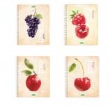 Тетрадь А5, 80 л., HATBER ECO, спираль, клетка, обложка картон, 'Fruit Style' (4 вида), 80Т5C1сп