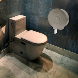 Диспенсер для туалетной бумаги ЛАЙМА Professional (Система T2), малый, нержавеющая сталь, матовый, 605048